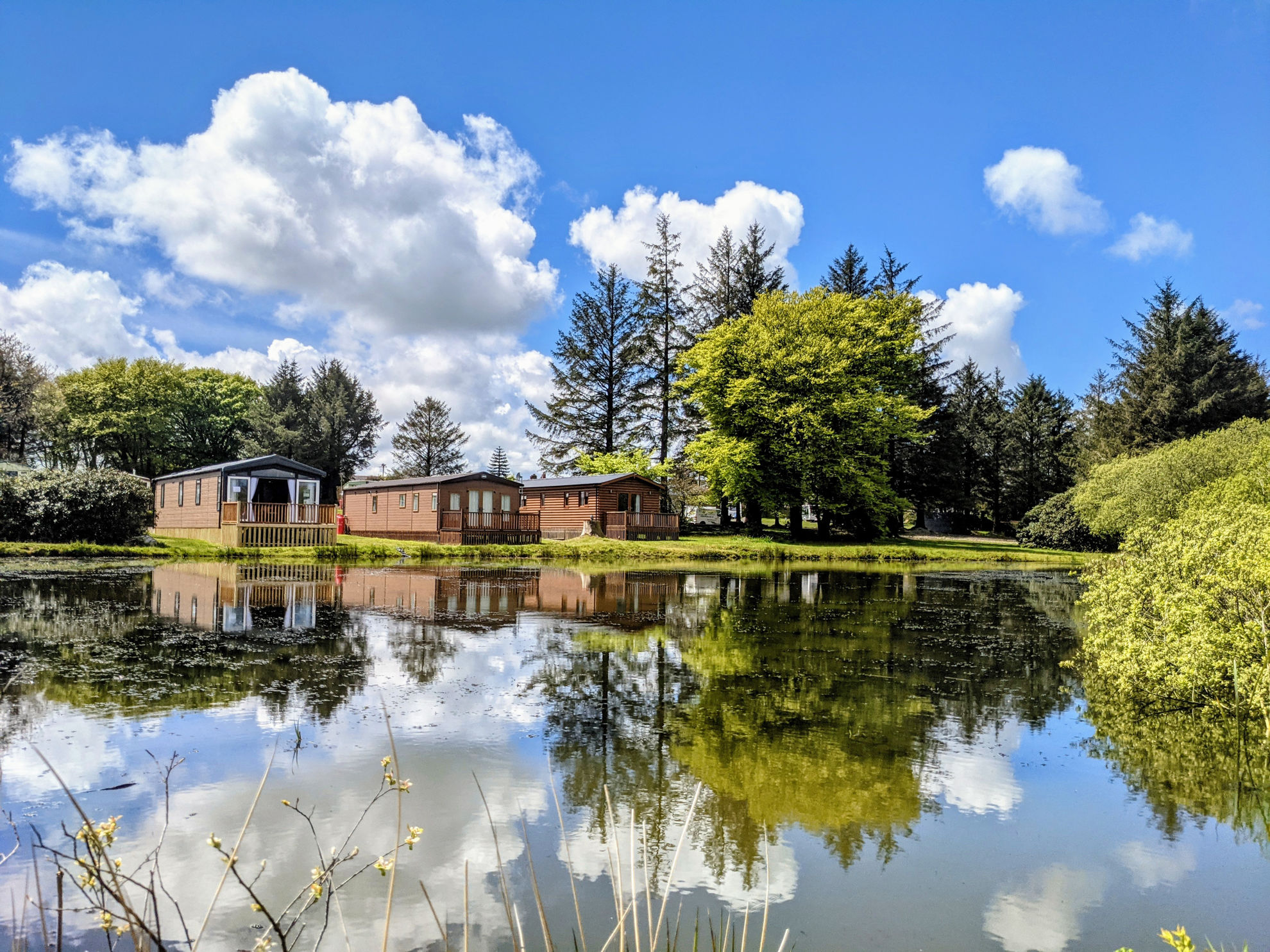 Picture of Rosebush Holiday Park